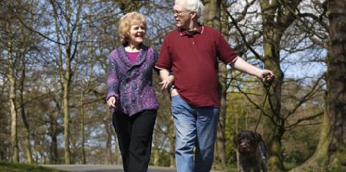 Каждая минута активности может принести пользу для здоровья пожилых людей