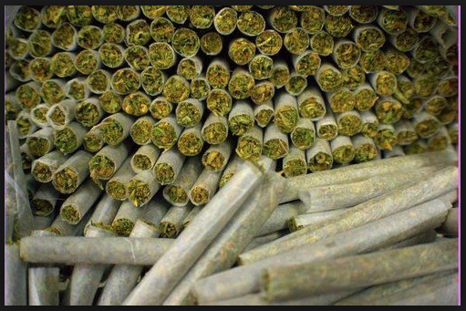влияние марихуаны на человека: