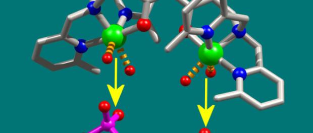 Ученые синтезировали новый противораковый препарат на основе меди