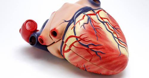 Трудности в повседневной жизни как симптом сердечной недостаточности