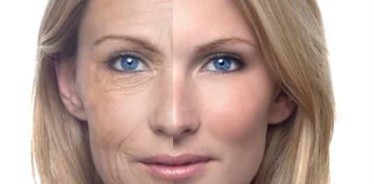 Создан препарат, замедляющий процесс старения