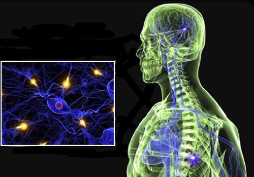 Когда ученые всего мира вылечат рассеянный склероз