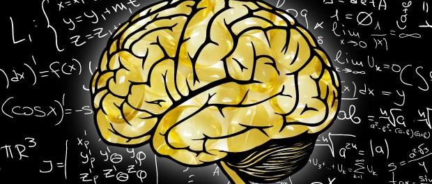 головной мозг, рыбий жир