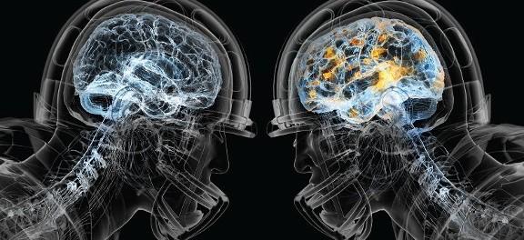 анализ крови, сотрясение головного мозга, белок
