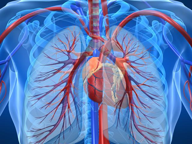 артериальная легочная гипертензия, ген, секвенирование ДНК