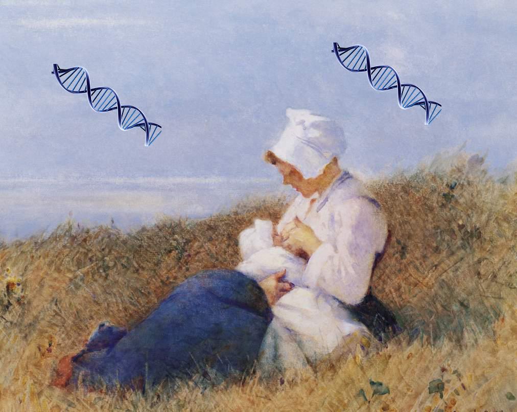 материнство, ген