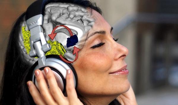 музыка, неврология