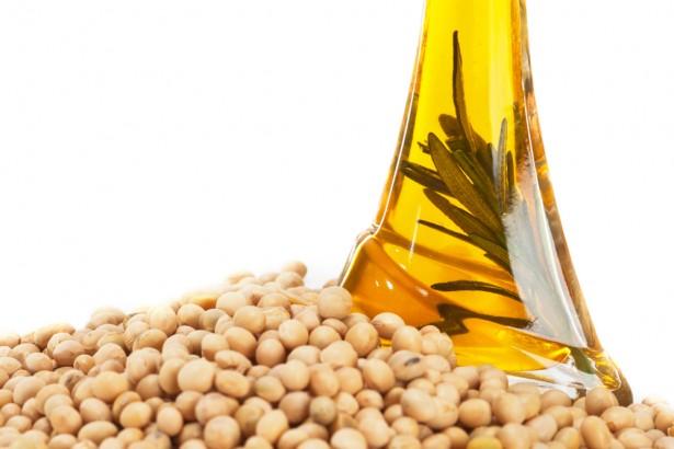Соевое масло, ожирение