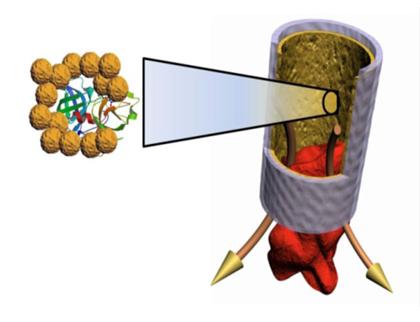 Стент, искусственные сосуды, нанопокрытие