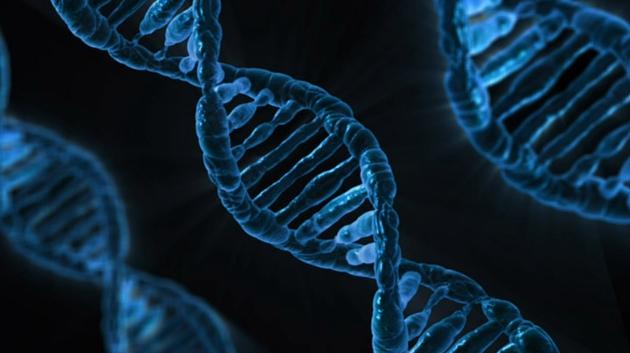биомаркер, рак, генетические изменения, кэп-анализ экспрессии генов, атлас ракового генома