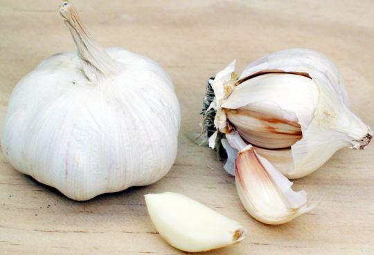 Заболевания сердца, чеснок, The Journal of Nutrition,