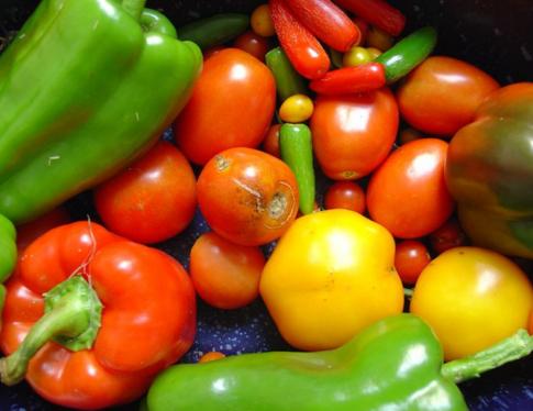 флавоноиды, фрукты, овощи, BMJ