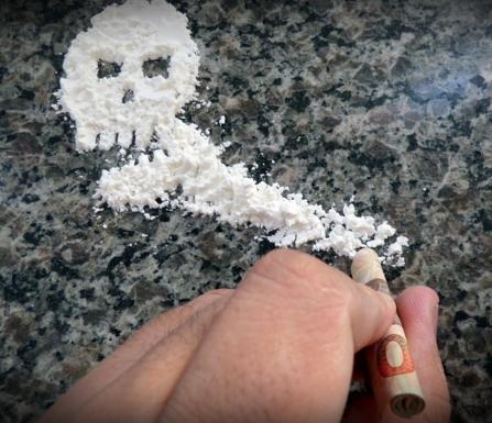 кокаин, Addiction Biology, головной мозг