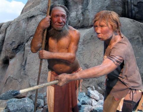 неандертальцы, ДНК,  Science
