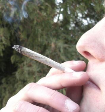 марихуана, вербальная функция, JAMA Internal Medicine