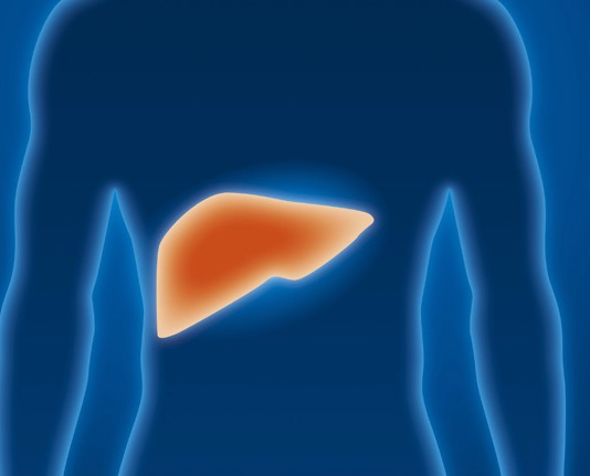 Alimentary Pharmacology & Therapeutics, вирусный гепатит, рак печени