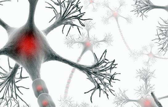 рассеянный склероз, PNAS