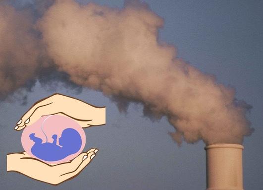 загрязнение воздуха, мертворождение