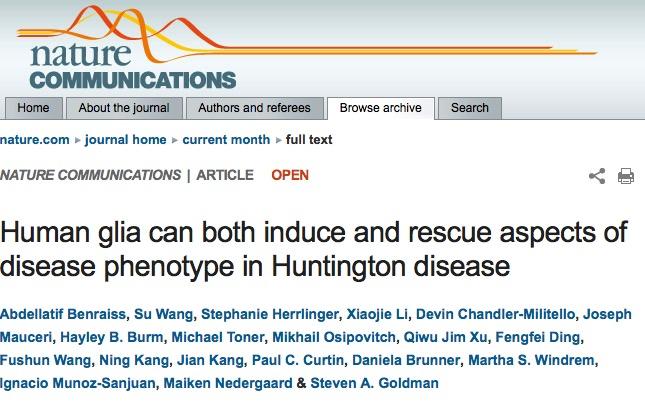 болезнь Гентингтона, Nature Communications