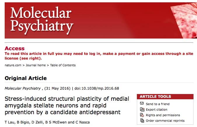 Molecular Psychiatry, стресс
