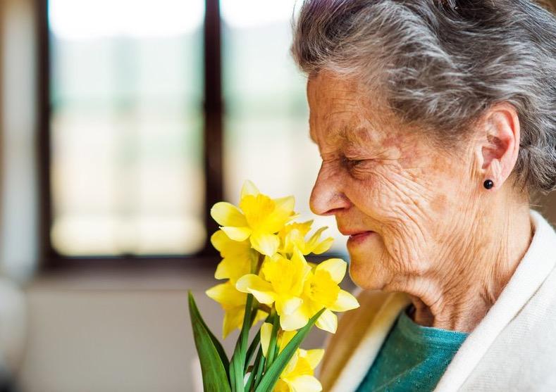 Болезнь Альцгеймера, запах