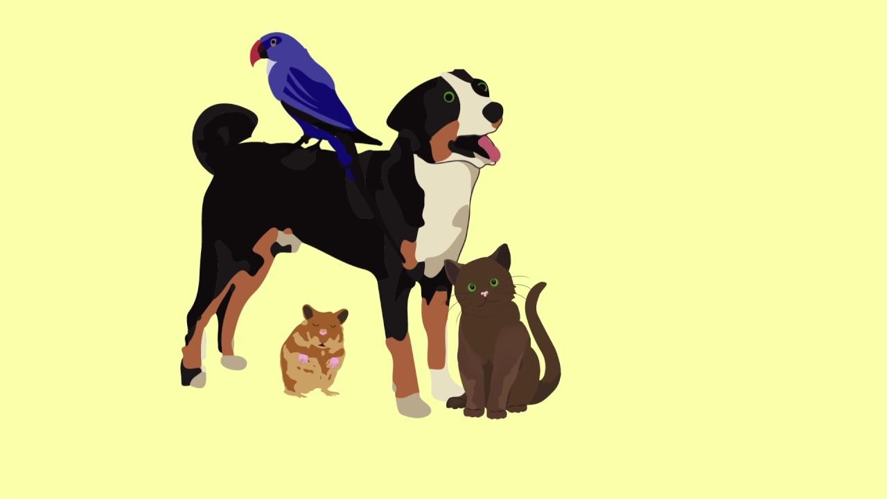 Домашние животные, психические заболевания,