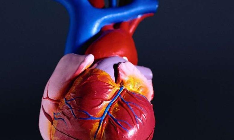 диабет, сосуды сердца