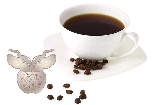 кофе, рак предстательной железы