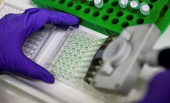 алгоритм, поиск генов, заболевания